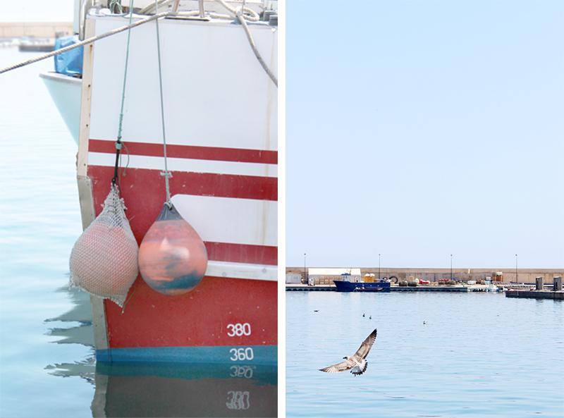 escapada al Mediterraneo - puerto Calpe - Once a Day