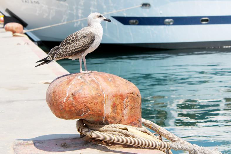 Escapada al Mediterraneo - Puerto Calpe - Once a Day Blog