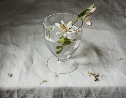 Pilar Pequeño. Bodegón con flores de limonero. 2010