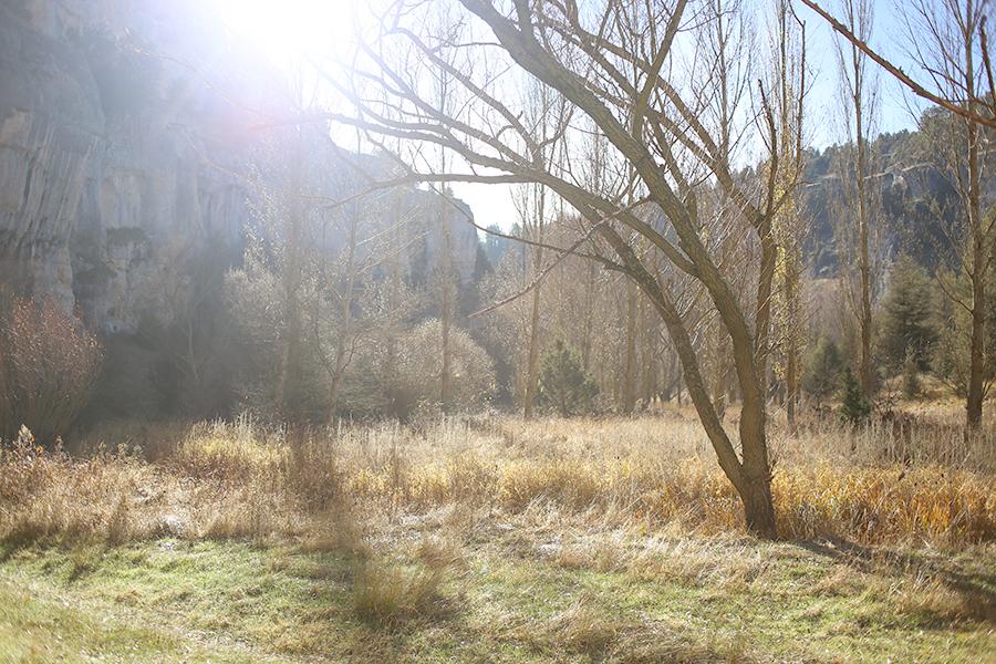 Cañón del Río Lobos - Once a Day Blog