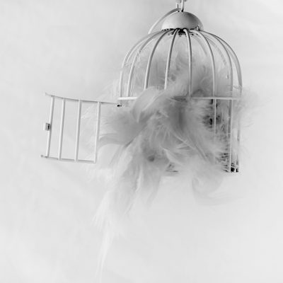 Nube - Jaula - Homenaje a Chema Madoz - Once a Day blog